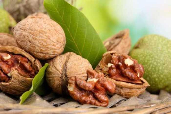 О грецких орехах пора вспомнить в июне. |