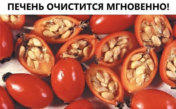 129567487_image__10_-3197836