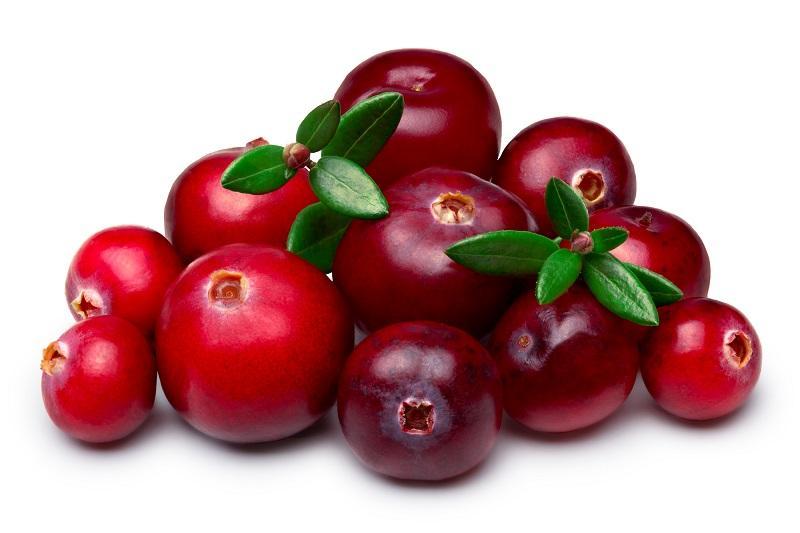 wild-cranberries-isolated