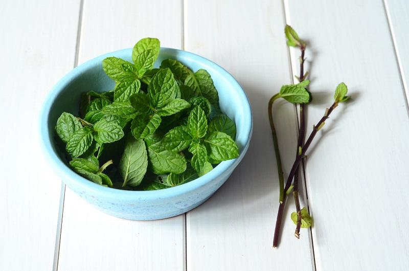 fresh-peppermint-leaves
