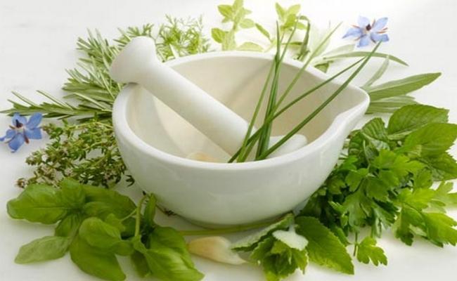 herbal-remedies-1514333