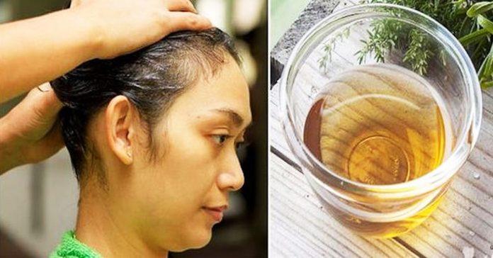 shampun0602-696x364-1-3607640